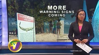 TVJ News: More Warning Signs Needed for Crocodiles - January 2 2020
