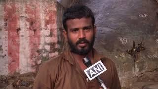 12 Jun, 2021 - Fruit vendors feed 1,000 hungry monkeys amid lockdown in India - ANIINDIAFILE