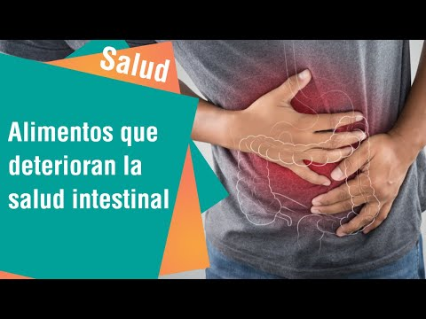 ¿Qué alimentos o fármacos deterioran nuestro intestino   Salud