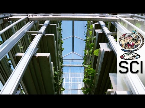 Vertical Farming: Singapore 2013 documentary movie play to watch stream online