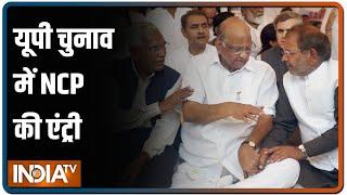 यूपी चुनाव के दंगल में कूदेगी शरद पवार की NCP, सपा के साथ करेगी गठबंधन - INDIATV