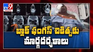 TS Govt Alerts over black fungus    One Minute Full News - TV9 - TV9