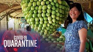 Mango Growers, nakikipagtulungan sa online sellers para makabangon mula sa COVID-19 | Teleradyo