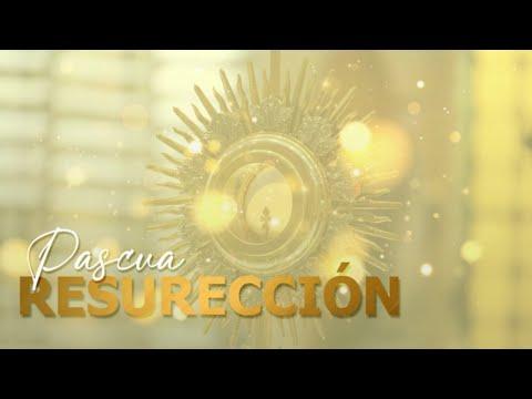 SANTA MISA // Miércoles de la IV Semana de Pascua