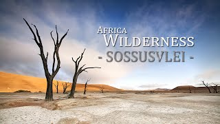 Sossusvlei : Namibias dead-end marsh | Wilderness Safaris Style