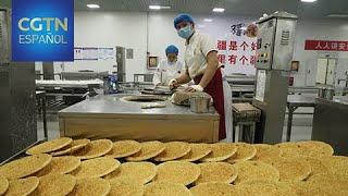 La región autónoma uygur de Xinjiang toma medidas para estabilizar el empleo
