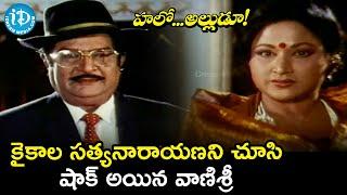 Vanisri Shocked Seeing Kaikala Satyanarayana | Hello Alludu Scenes | Suman | Rambha | iDream Movies - IDREAMMOVIES