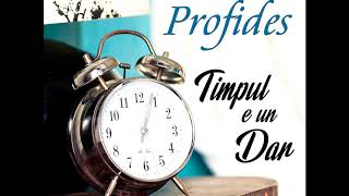 Timpul e un dar - Profides