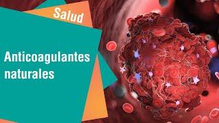 Alimentos para prevenir coágulos | Salud