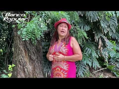 Testimonio Carmen Berrocal – Venta de Bienes