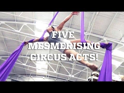 Five Mesmerizing Circus Arts!