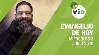 El evangelio de hoy Miércoles 3 de Junio de 2020, Lectio Divina ???? - Tele VID