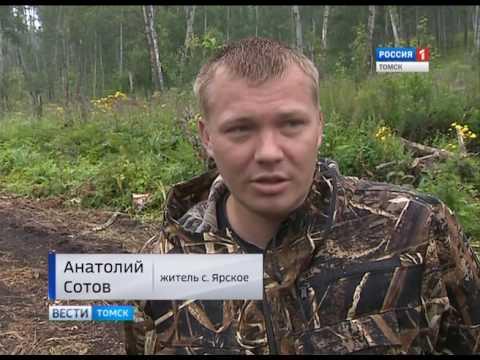 Вести-Томск, выпуск 20:45 от 24.07.2017