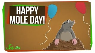 Happy Mole Day!