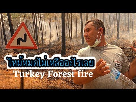 ไฟไหม้ป่าที่หนักที่สุดในตุรกี-