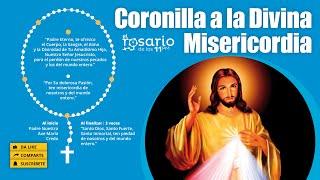 ????CORONILLA DE LA DIVINA MISERICORDIA y EVANGELIO del día 3 de julio