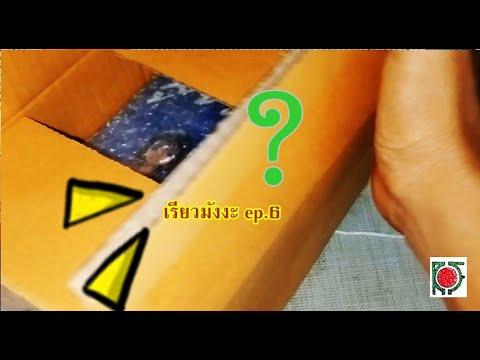 เรียวมังงะ-ep.6-Unbox
