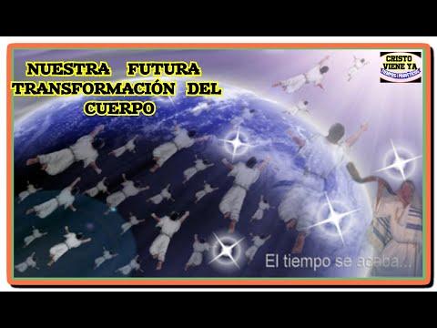 NUESTRA  FUTURA  TRANSFORMACIOS/  EL  CUERPO  GLORIFICADO/