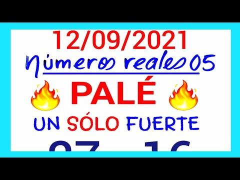 NÚMEROS PARA HOY 12/09/21 DE SEPTIEMBRE PARA TODAS LAS LOTERÍAS...!! Números reales 05 para hoy...!!
