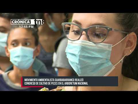 #ENVIVO Crónica TN8 - Viernes 11 de Junio 2021 - Edición de mediodía