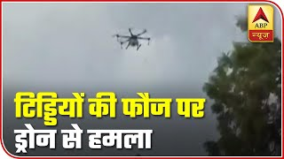 Drones used to sprinkle pesticide as locusts attack UP's Agra - ABPNEWSTV
