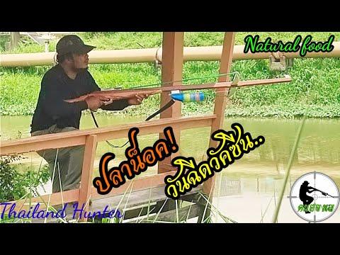 #SHOOT-FISH-ยิงปลาน็อคน้ำ-ก่อน