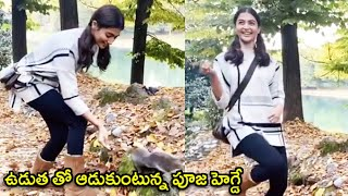 CUTE VIDEO: Pooja Hegde Playing With Squirrel In The Forest | Rajshri Telugu - RAJSHRITELUGU