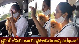 Surekha Vani Driving Car With Her Dog Krishna | డ్రైవింగ్ చేసుకుంటూ కుక్క తో ఆడుకుంటున్న సురేఖ - IGTELUGU