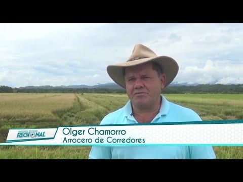 Costa Rica Noticias Regional - Miércoles 08 Setiembre 2021