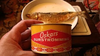 Out of date surströmming with the Manx beard club.