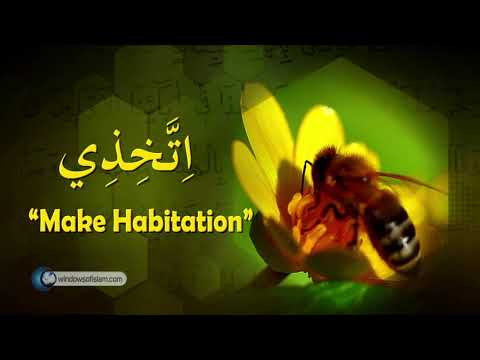 Scientific Miracles of the Quran # 4 The Female Honey Bee