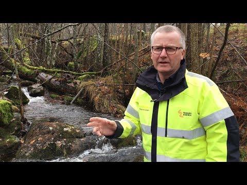 Beslut klart för faunapassage i Forsnäs