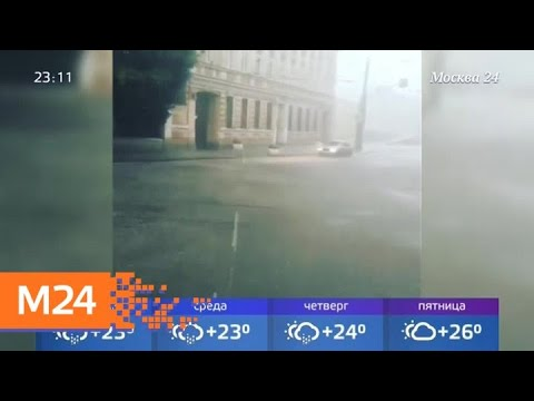 К концу недели в Москву придет жара - Москва 24