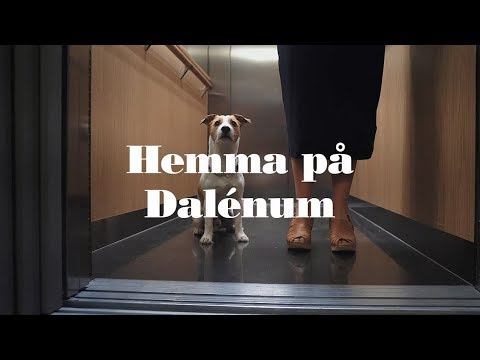 Hemma på Dalénum - JM