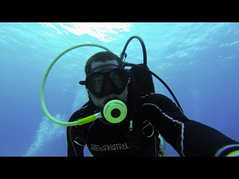 connectYoutube - Day in the Life: Ichthyologist (Fish Biologist)