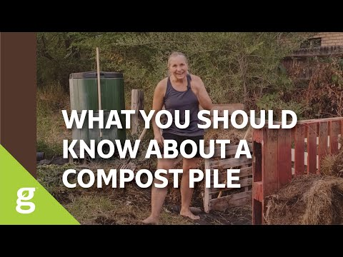 What Every Homeowner Needs To Know About Compost Piles