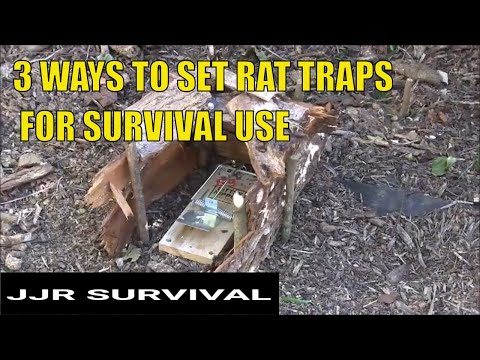 3 Survival Rat Trap Sets