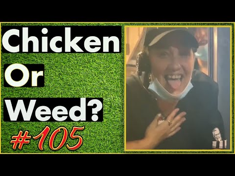 Smoking Weed / Weed Fail Compilation / WEED MEMES AND Weed Pranks! #105