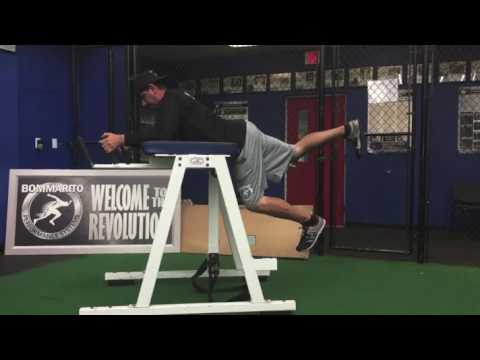Exercise of The Week: Reverse Hyper Iso Hold Switches