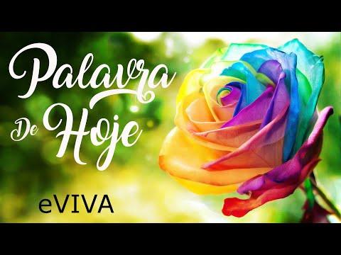 PALAVRA DE HOJE 11 DE JUNHO 2020 eVIVA MENSAGEM MOTIVACIONAL PARA REFLEXÃO JEREMIAS 17 SALMO BOM DIA