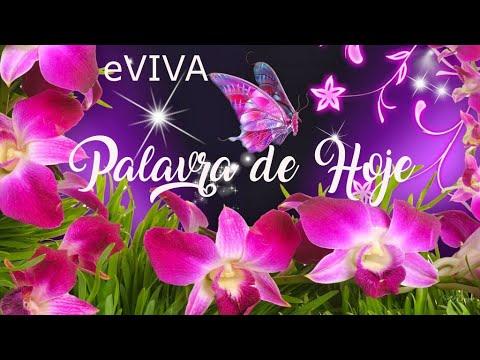 PALAVRA DE HOJE 16 DE MAIO 2020 eVIVA MENSAGEM MOTIVACIONAL PARA REFLEXÃO CORÍNTIOS 4 7 BOM DIA!
