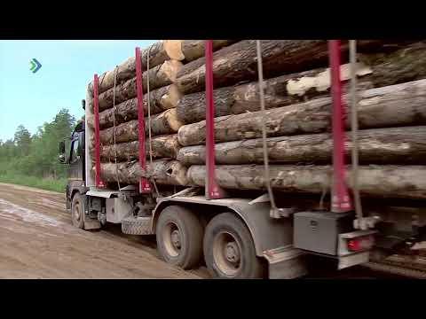 Сохранение грунтовых автомобильных дорог в Коми возможно при транспортировке древесины по рекам