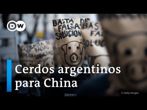 Polémica por el acuerdo con China para importar carne