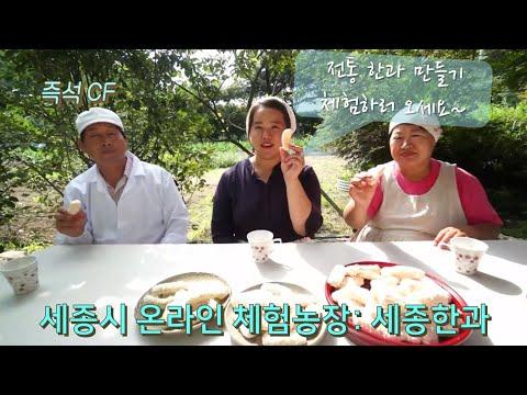 [온라인 체험농장] 전통한과 만들기 (feat. 세종시 세종한과)
