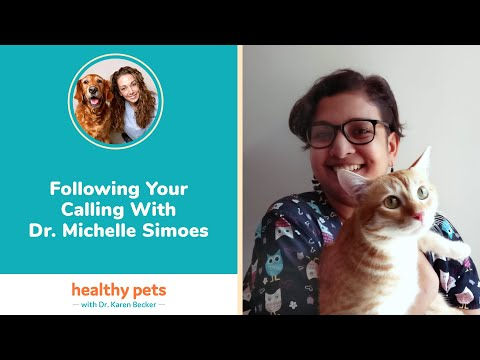 Following Your Calling WIth Dr. Michelle Simoes