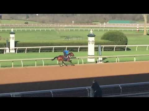 Bourbon Country at Keeneland 4-5-17
