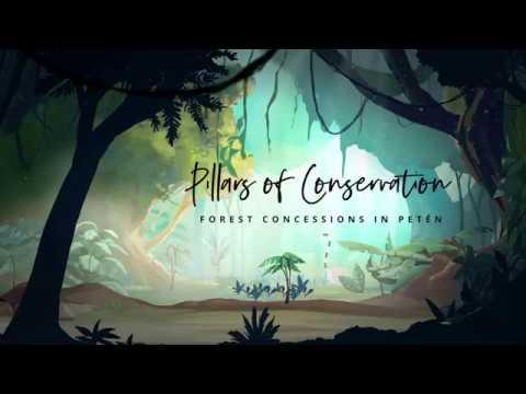 Pillars of Conservation