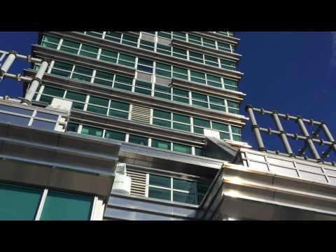 Video op YouTube: Taipei 101 tower: wind sounds like music