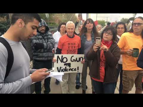 Student protests for gun reform in Albuquerque