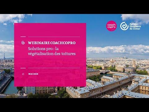 Webinaire | Solutions pro : la végétalisation des toitures